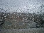 سازمان هواشناسي اعلام كرد/اواخر اين هفته باران قابل ملاحظه اي در داريون خواهد باريد