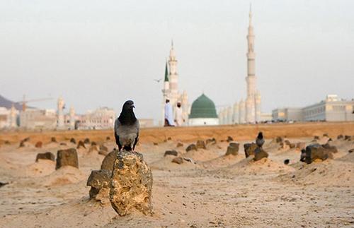 سه راهی مسجدالنبی،بقیع و مشهد…