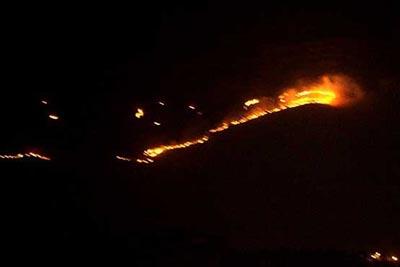 فیلم:آتش سوزی در پارک ملی بمو
