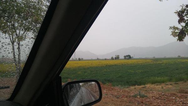 باران بهاری در داریون