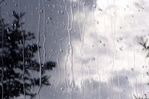 ادامه روند بارش باران در اکثر مناطق فارس