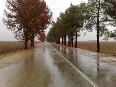 تصاویر:حس خوب یک روز بارانی در منطقه داریون