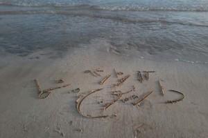 داریون نما در سواحل جزیزه ناز قشم+تصاویر