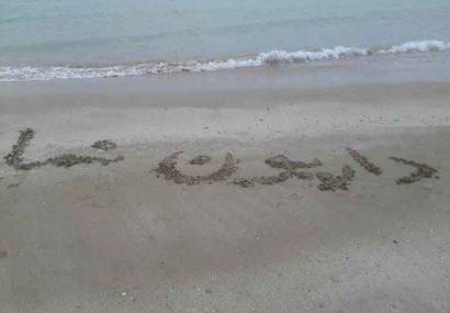داریون نما در کنار خلیج همیشه فارس
