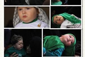 مراسم شیرخوارگان حسینی در داریون+تصاویر